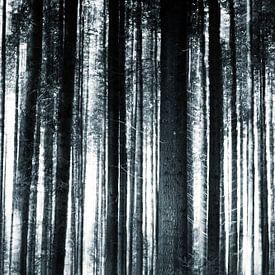 Abstracte boomstammen in zwart wit van Fotografiecor .nl