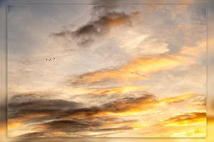 L'air au-dessus de la Frise sur Haaije Bruinsma Fotografie