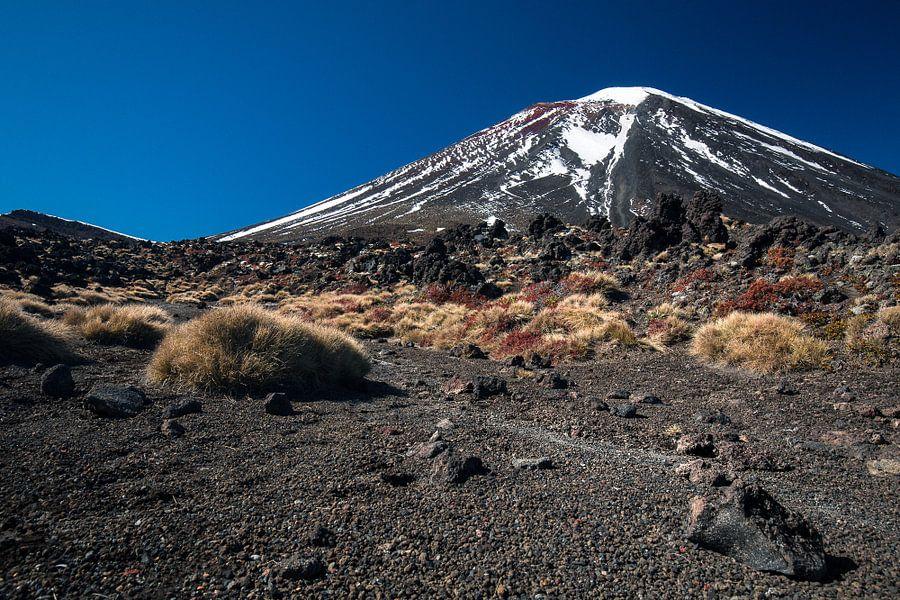 Mount Ngauruhoe, Tongariro, Nieuw-Zeeland van Martijn Smeets
