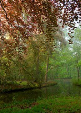 Eine schöne Waldszene im Frühjahr in den Niederlanden von Jos Pannekoek
