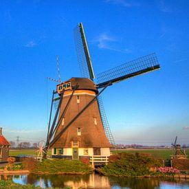 Een Oer-Hollandse  Molen van Dexter Reijsmeijer
