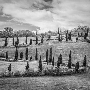 Toskana, Italien in schwarzweiß von Teun Ruijters