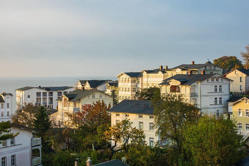 Blick auf die Stadt Sassnitz auf der Insel Rügen von Rico Ködder