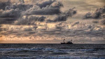 Ship Ahoy van Jeanette van Starkenburg