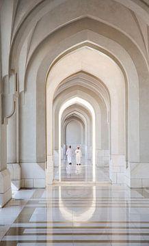 Pracht en praal in het paleis van de Sultan sur Karin Mooren
