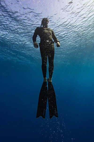 Opstijging van freediver van Eric van Riet Paap