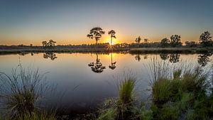 Zonsondergang in spiegelbeeld