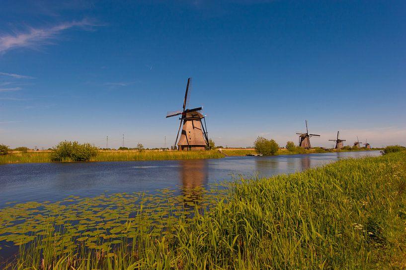 Windmills Kinderdijk van Brian Morgan