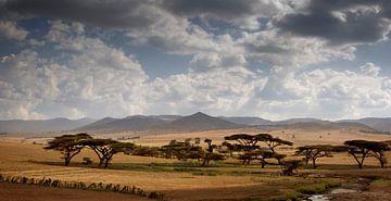 Simien Berge Äthiopien von Gerard Burgstede