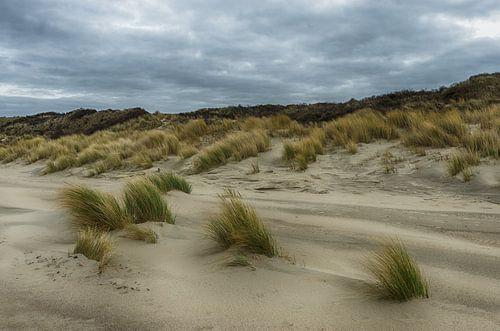 Donkere wolken boven de duinen van Mark Bolijn