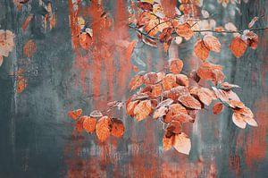 Schilderachtige herfst blaadjes