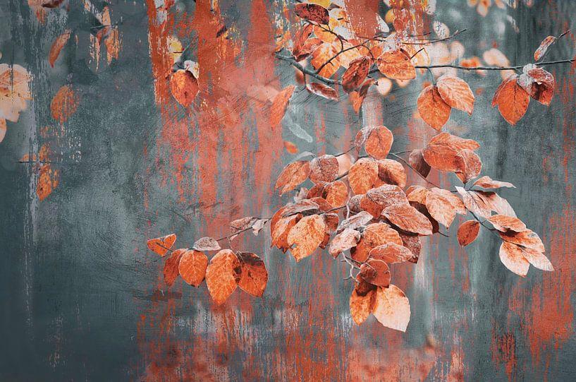 Schilderachtige herfst blaadjes van Rob Visser