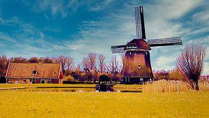 de Viaan in Alkmaar van Digital Art Nederland