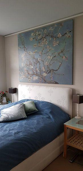 Klantfoto: Amandelbloesem van Vincent van Gogh (zacht blauw/early dew)  van Meesterlijcke Meesters