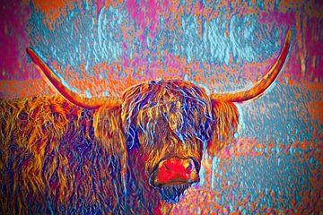 Die Kunst des schottischen Highlanders von Manon Moller Fotografie