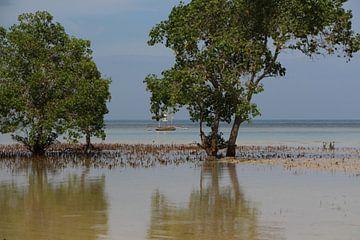 Emerald Beach - Puerto Princessa, Palawan, Filipijnen van Stefan Speelberg