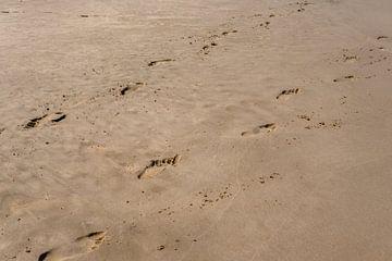 Fußabdrücke von Ennio Brehm