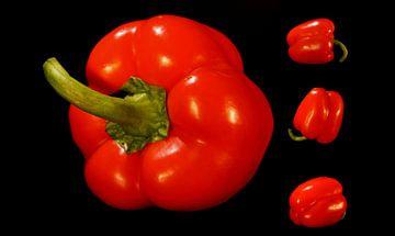 Paprika rood collage zwarte achtergrond van Marion Hesseling