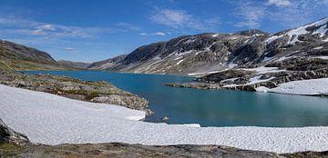 Gamle Strynefjellsvei, Noorwegen van Adelheid Smitt