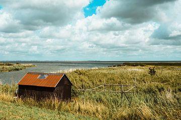 Natuur van Noord-Holland van Mandy Jonen