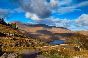 Ladies View Killarney National park van
