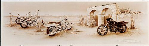 SPORTSTER RUINE Harley Davidson van