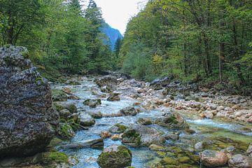 Rivier landschap in Oostenrijk van Linda Herfs