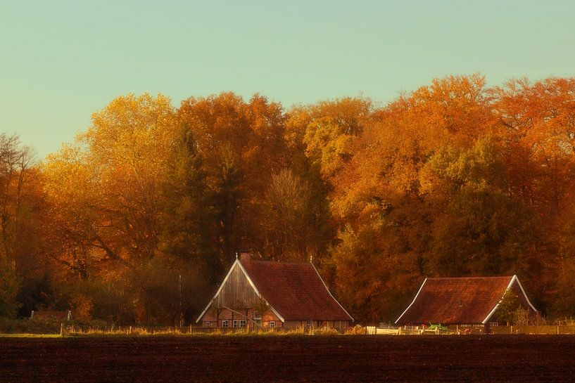 Oude boerderij van Gerhard Hoogterp