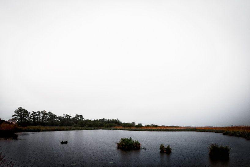 Troosteloze uitzichten tijdens een regenbui van Jacques Jullens