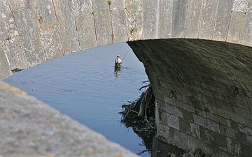 Visser in the Loire van Artelier Gerdah