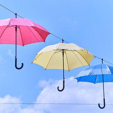 Regenschutz in der Sonne von Geert van Kuyck