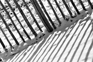 Sonniger Schnee von Hannelore
