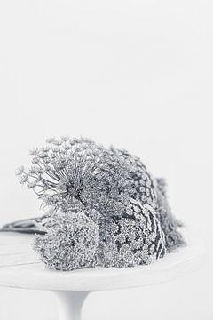 Stilleben von Blumen in Schwarz-Weiß von What I C