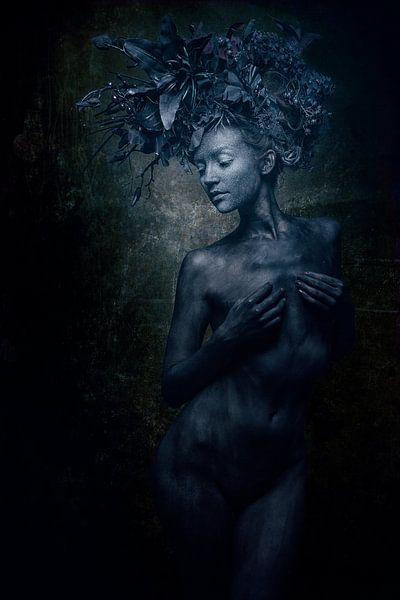 Black beauty van Allard Kamermans