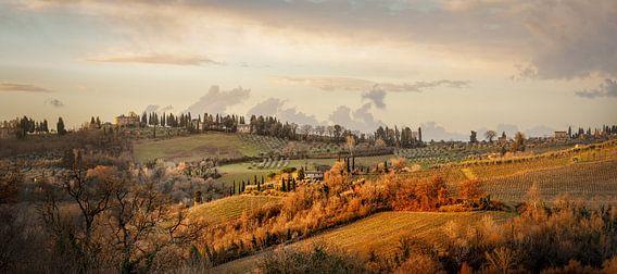 First light in Tuscany van Teun Ruijters