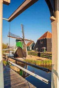 Windmolen in het voorjaar, Noord-Holland, Nederland van Markus Lange