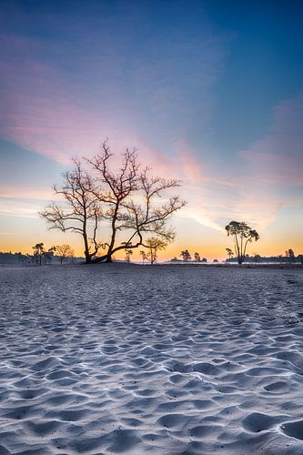 Sonnenaufgang mit Farbe