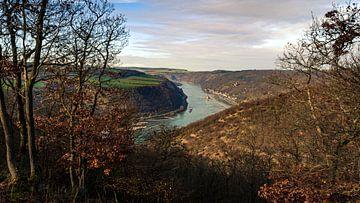 Das Rheintal von Jens Sessler