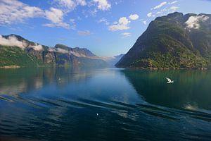 Norwegische Fjorde von
