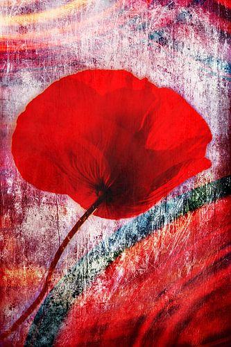 Poppy red van Violetta Honkisz