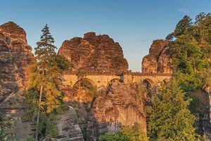 Saxon Switzerland van