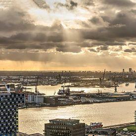 Panorama Port de Rotterdam sur Frans Blok