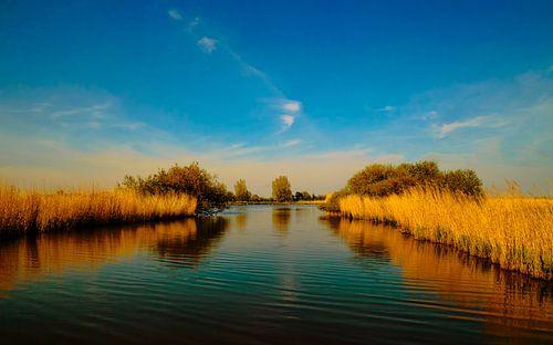 Zonnig water landschap