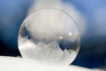 frozen bubble part 2 van Tania Perneel