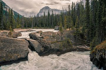 Natural bridge van Joris Pannemans - Loris Photography
