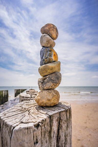 De stenen toren. van Jolanda Bosselaar