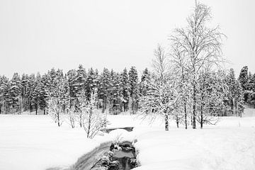 Warme bron in ijslandschap, Finland van Rietje Bulthuis