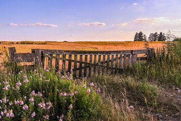 Een hek in landschap van Marga Vroom