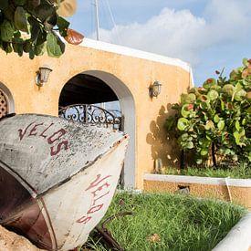 Stilleven details in de tuin van Verita Fotografie