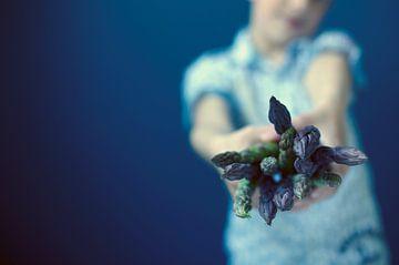 Geen bloemen maar asperges von Anna Green